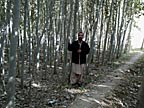 Forestry professor provides expertise to Afghans