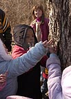 Touch of Nature offers maple syrup fun