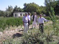 Groninger inspects saplings in Afghanistan