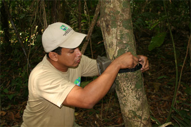 Researchers expand biodiversity study in Panama