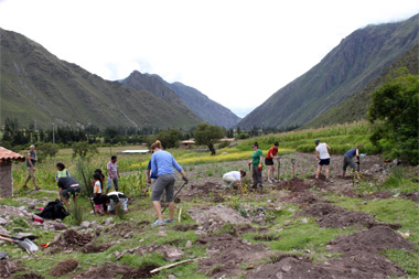 SIU Carbondale students plant fruit trees in Peru